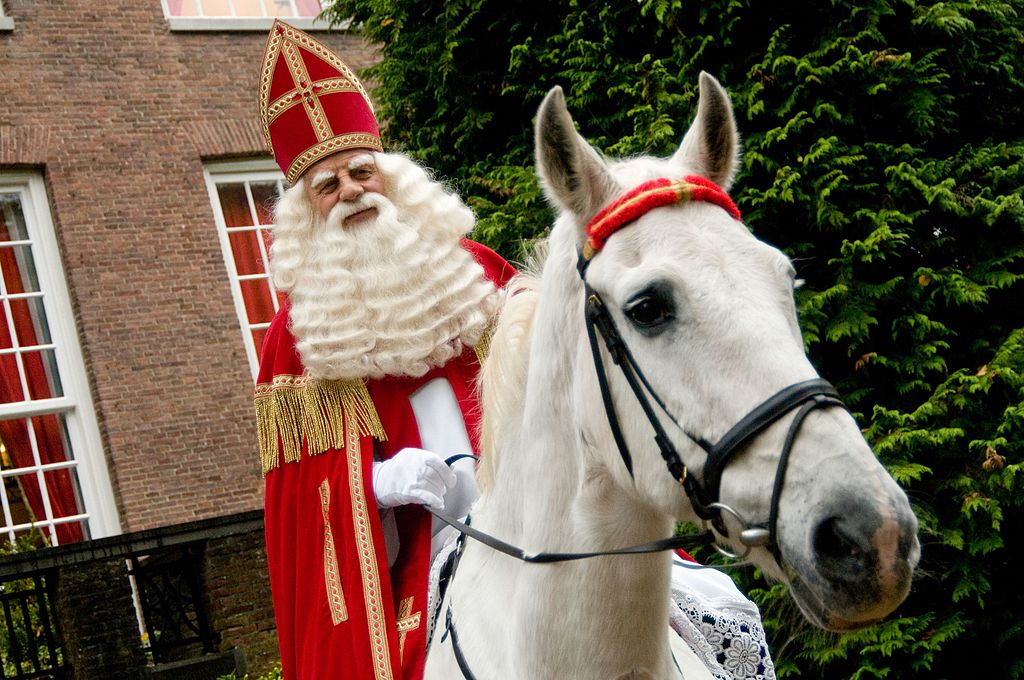 Old man dressed as Sinterklaas on white horse