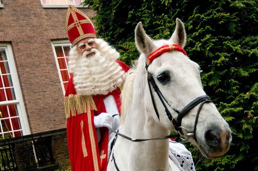 Old man dressed as Sinterklaas on white horse