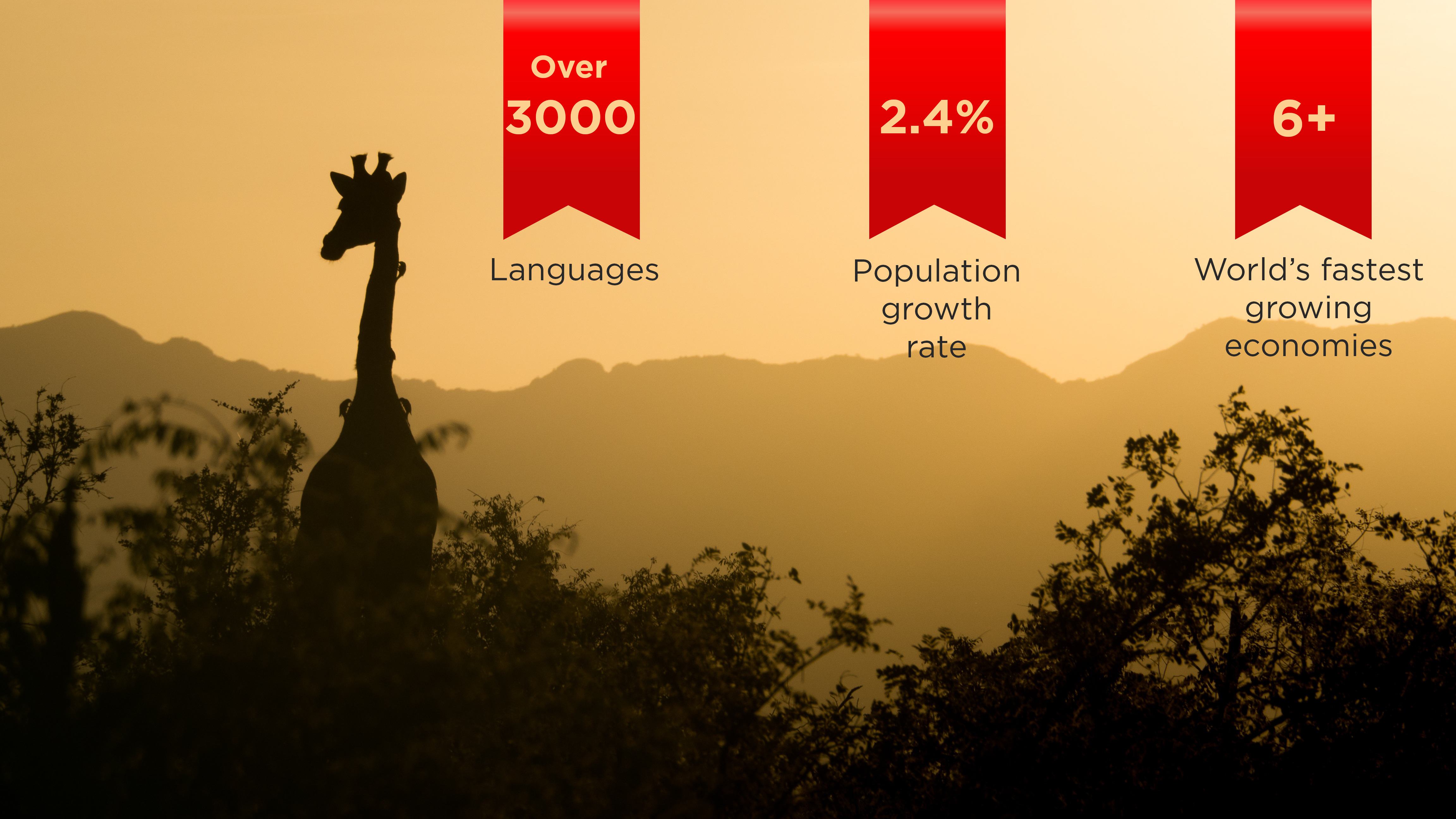 Stats about the African continent which explain the need for African language translations