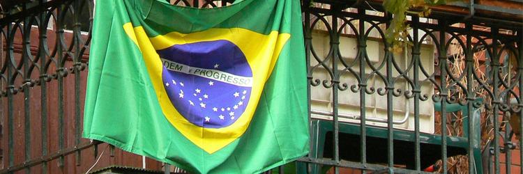 Brazil Flag - Brazilian Market