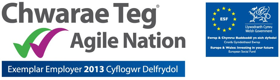Chwarae Teg, Agile Nation