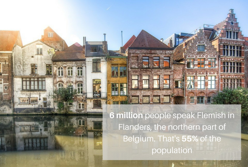 Stats about the Flemish language that highlight the need for Flemish translation services
