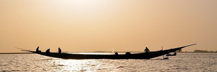 Niger River is a part of the Nigerian Market