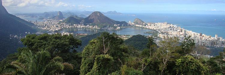 Rio de Janeiro - Brazilian Market