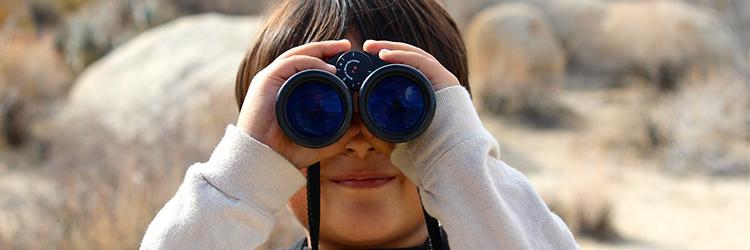 binoculars website