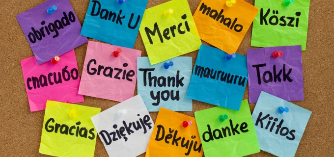 Wolfestone celebrates translation day