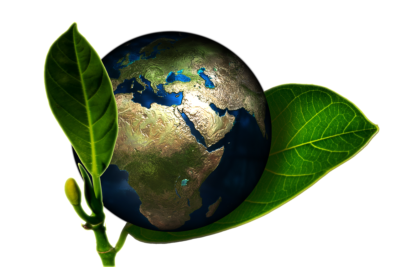 Sustainable development also means creating a future that protects the world's natural resources