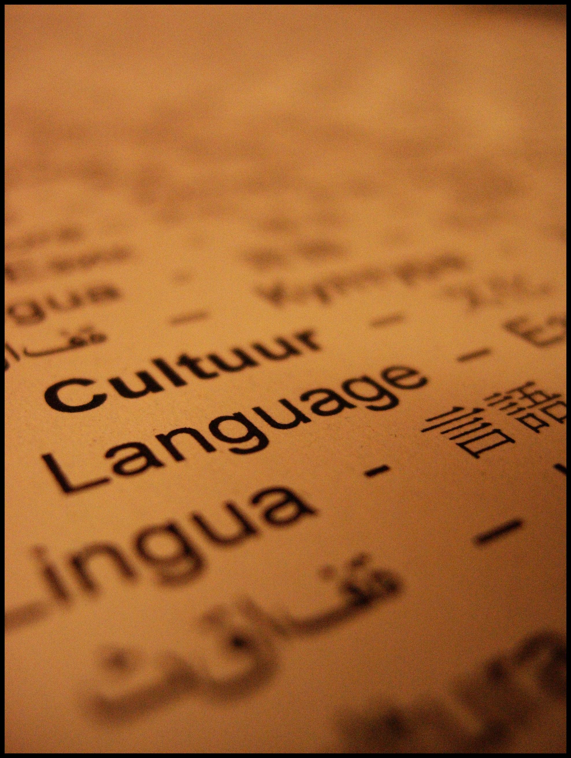 languagepicture