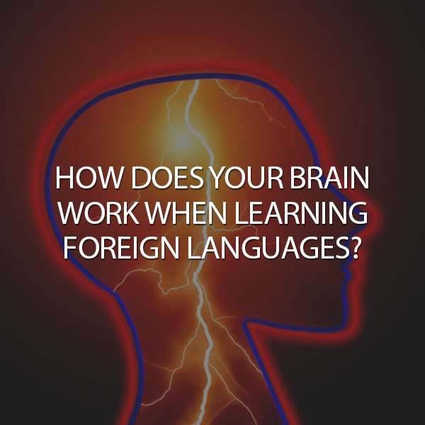 How Does Your Brain Work When Learning Foreign Languages